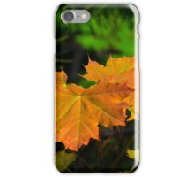 Revelstoke Fall  iPhone Case/Skin
