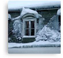 Freezing house Canvas Print