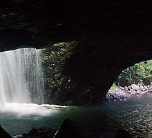 Natural Bridge - Springbrook National Park, Qld by Odille Esmonde-Morgan