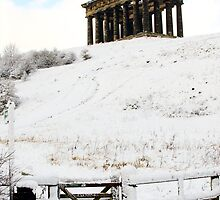 Penshaw Monument in the Snow by Paul Berry