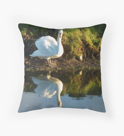 I'm thinking about getting in! Throw Pillow