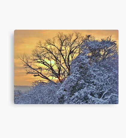 Sunrise After the Snow Canvas Print