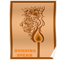 Burning Match Poster
