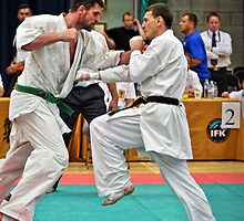 Punching by Sebastian Chalupa