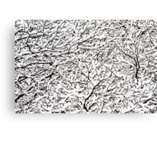 Winter in Austria Canvas Print