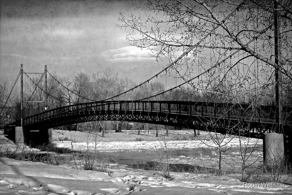 Bridging the Gap by Robin Webster