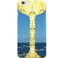 The Holy Grail iPhone Case/Skin