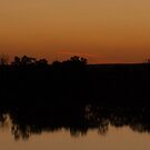 Sunset On The Mighty Murray River - South Australia by Dwayne Madden