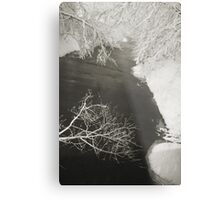 Winter Scene #16 Metal Print