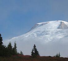 Mount Baker by Corey Bigler