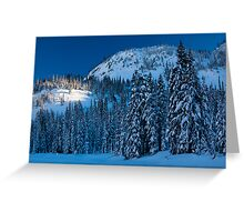 Silent Trees Greeting Card
