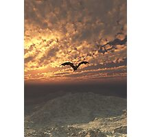 Dragon Flying at Sunset Photographic Print