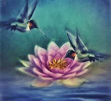 Lotus Flower 2 by Gypsykiss