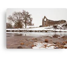 Bolton Abbey. Canvas Print