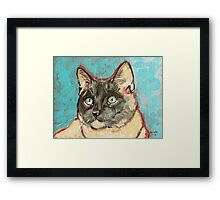Birman Cat Deeply Painted Framed Print