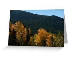Fall on the Ohio Pass Road, Colorado Greeting Card