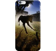 Dogs with game face on .20 iPhone Case/Skin