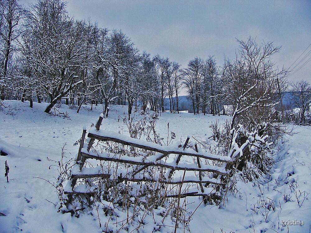 winter story 2 by cristina
