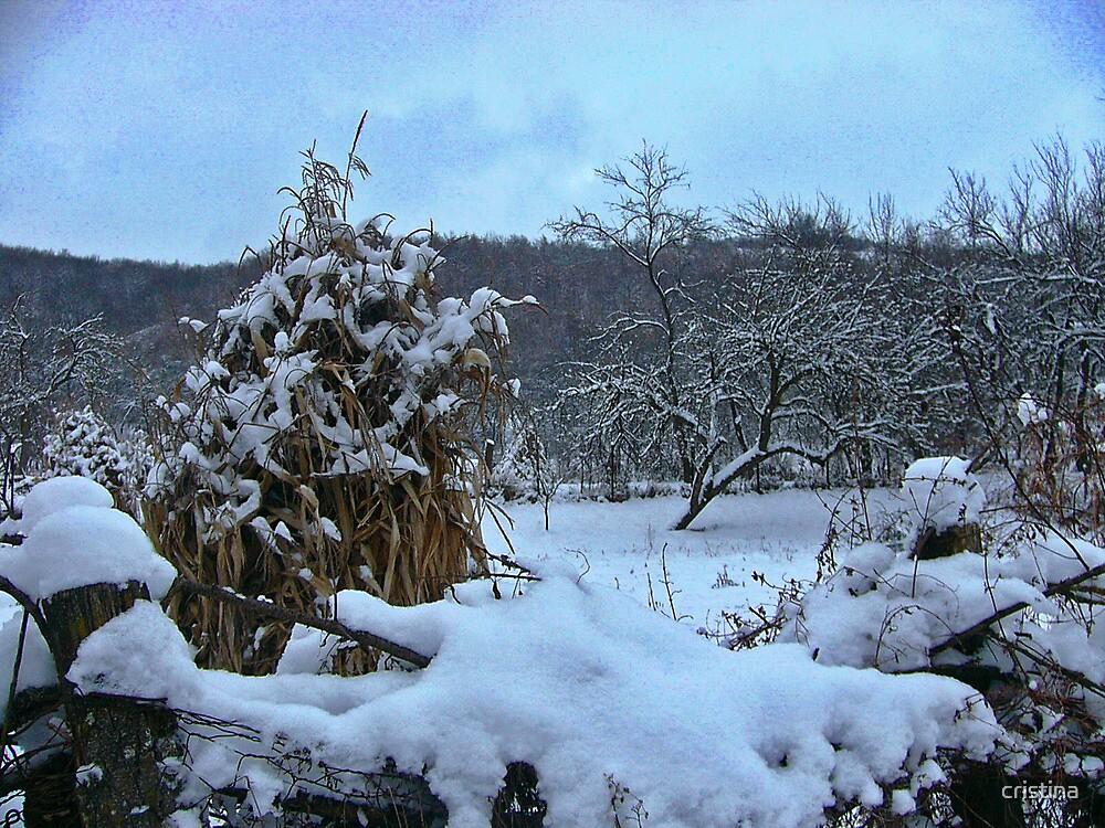 winter story 5 by cristina