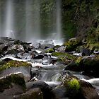 Hopetoun Falls, Otways National Park, Victoria, Australia by John Bullen