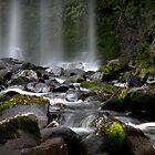Hopetoun Falls, Otways National Park, Victoria, Australia by John Bullen