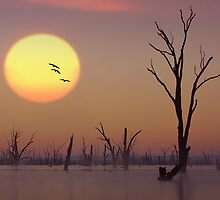Sunset - Lake Mulwala by Hans Kawitzki