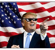Donald Trump Deal With It by Mrdavidrud