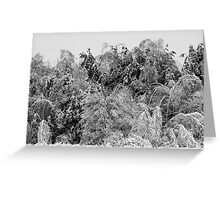 Winter's Chaos Greeting Card