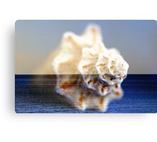 shEll oF St. croiX Canvas Print