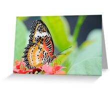 Maylay Lacewing Butterfly Greeting Card