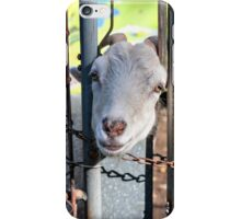 Does this fence make my head look fat? iPhone Case/Skin