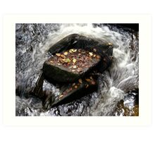 autumn leaves in raging stream Art Print