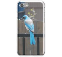 Blue Bird on Fence iPhone Case/Skin
