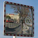 Mirror Image by Ian Ker