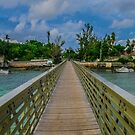 the railway trail walk way Baileys Bay Bermuda.. by buddybetsy