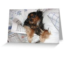 It's Good to be Me! Cavalier King Charles Spaniel Greeting Card