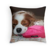 Peaceful Joy ~ Cavalier King Charles Spaniel Throw Pillow