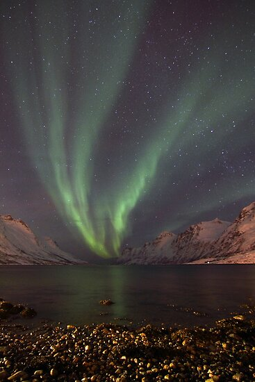 Aurora Borealis over the fjord by Frank Olsen