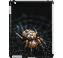 Spider on the Web  iPad Case/Skin