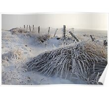 Frozen misty winter landscape, near Greenock, Scotland Poster