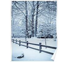 blue fence and trees Poster