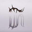 Monster IV by Igor Mazulev