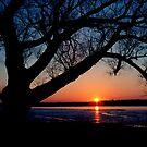 Winter Sunset by Oscar Gutierrez