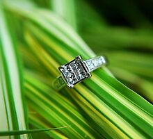 A Diamond in the Rough by Gronde Photography