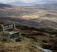 Mountain Seat by HDMattinson
