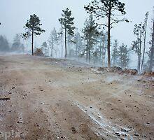 Arizona Snowstorm by pandapix