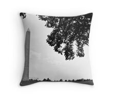 Shaded Monument Throw Pillow