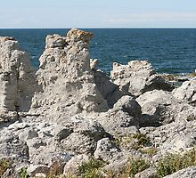 Rauks at Gotland by Tomas Rudh