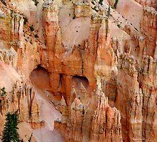 Hideaway ~ Bryce Canyon by Vicki Pelham