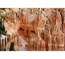 Hideaway ~ Bryce Canyon Photographic Print